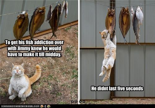 To get his fish addiction over with Jimmy knew he would have to make it till midday.