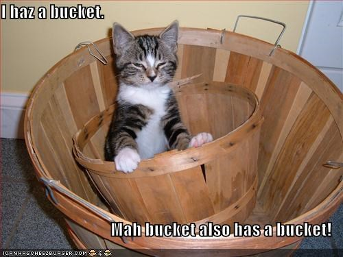 I haz a bucket.  Mah bucket also has a bucket!