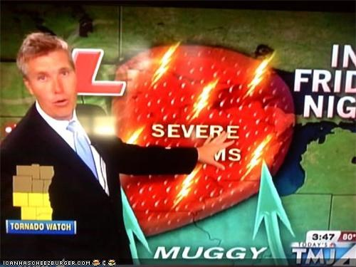 Pundit Blotter: Chance Of Severe Strawberries!