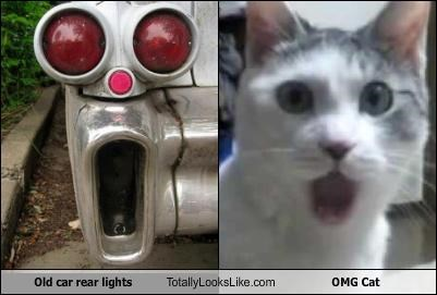 Old car rear lights Totally Looks Like OMG Cat - Cheezburger