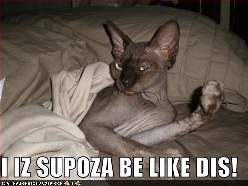 I IZ SUPOZA BE LIKE DIS!