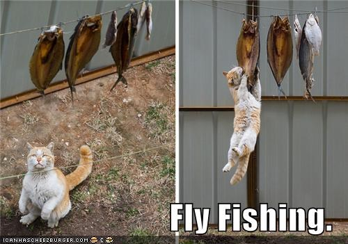 Fly Fishing.