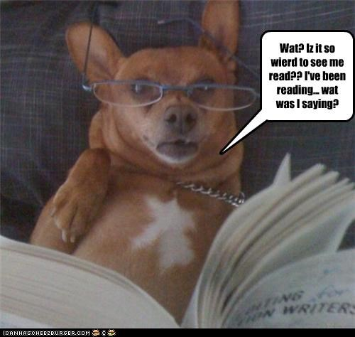 Wat? Iz it so wierd to see me read?? I've been reading... wat was I saying?