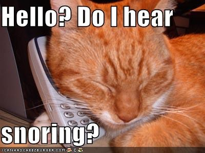 Hello? Do I hear   snoring?