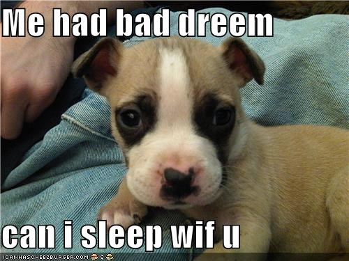 Me had bad dreem   can i sleep wif u