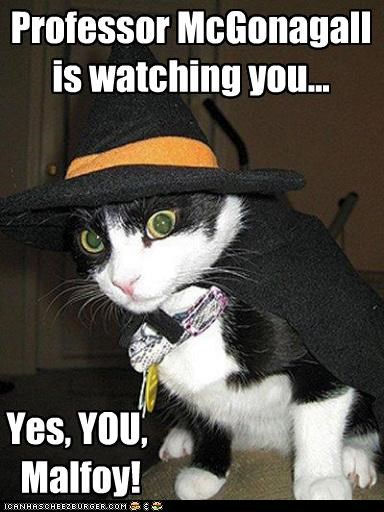Professor McGonagall is watching you...