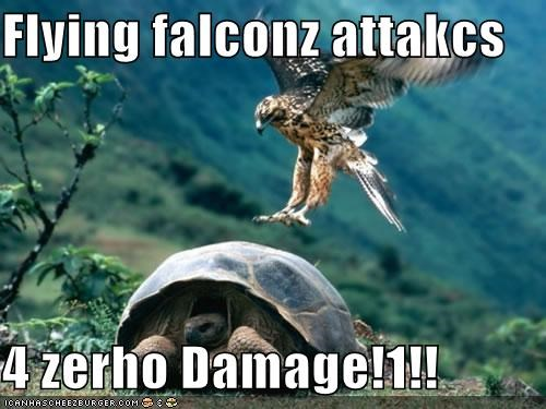 Flying falconz attakcs  4 zerho Damage!1!!