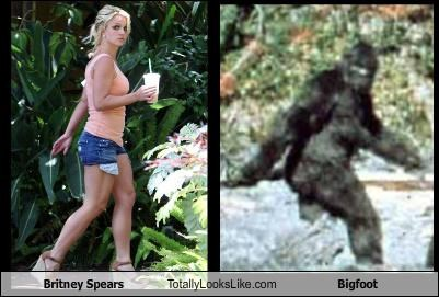 Britney Spears Totally Looks Like Bigfoot