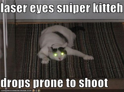 laser eyes sniper kitteh  drops prone to shoot