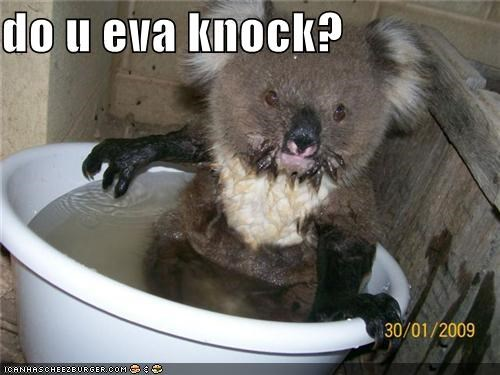 do u eva knock?