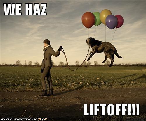 Balloons,flying,liftoff,walk