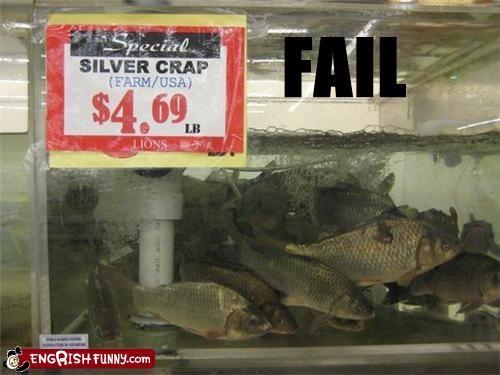 carp,crap,FAIL,fish,sale