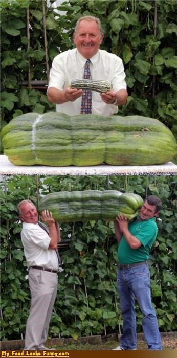 That's One Hell of a Squash