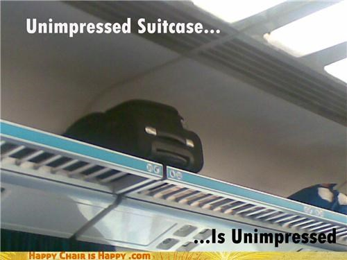 Unimpressed Suitcase Is Unimpressed...
