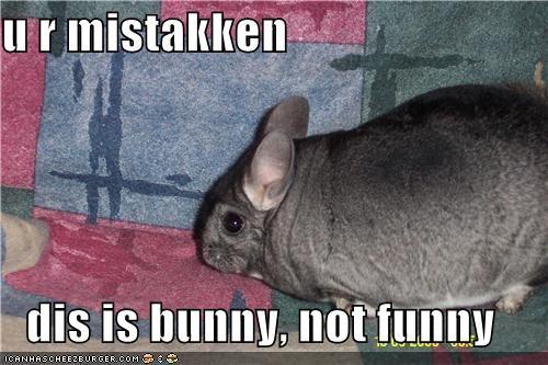 u r mistakken  dis is bunny, not funny