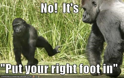 "No!  It's   ""Put your right foot in"""