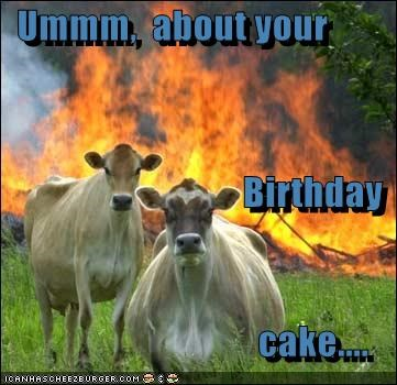Ummm,  about your                                 Birthday                                   cake....
