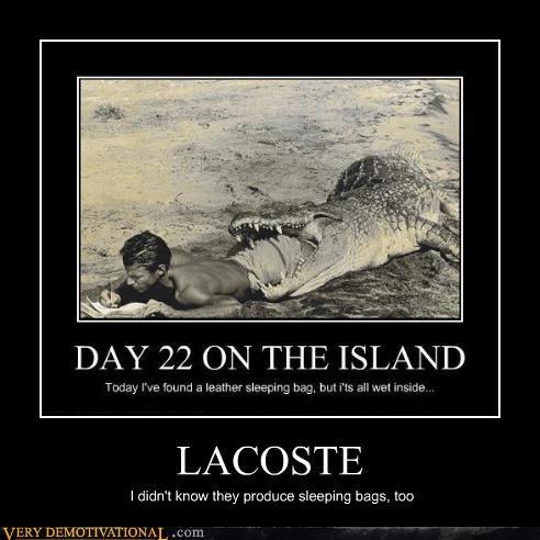 alligator,lacoste,eat,clothing