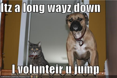 Itz a long wayz down  I volunteir u jump