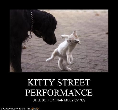 better than,caption,kitty,miley cyrus,street performance