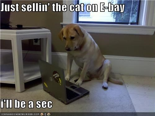 Just sellin' the cat on E-bay  i'll be a sec