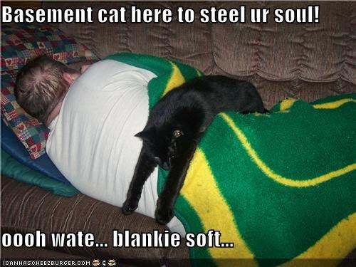 Basement cat here to steel ur soul!  oooh wate... blankie soft...