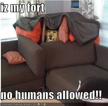 iz my fort  no humans allowed!!