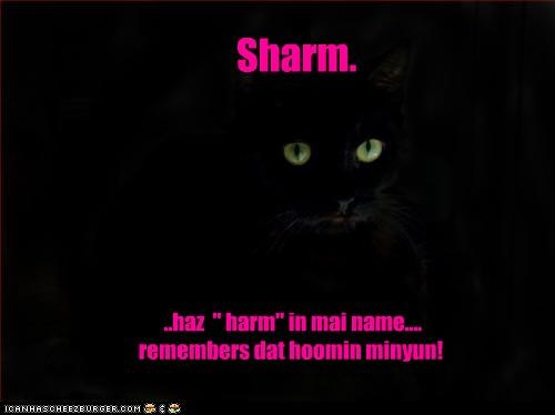 "..haz  "" harm"" in mai name.... remembers dat hoomin minyun!"