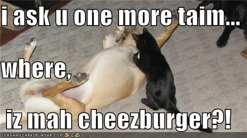 i ask u one more taim... where,  iz mah cheezburger?!