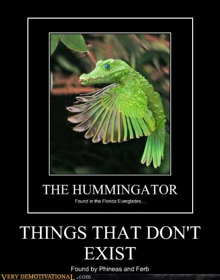 alligator,exist,hummingbird