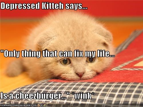 "Depressed Kitteh says... ""Only thing that can fix my life... Is a cheezburger..."" *wink*"