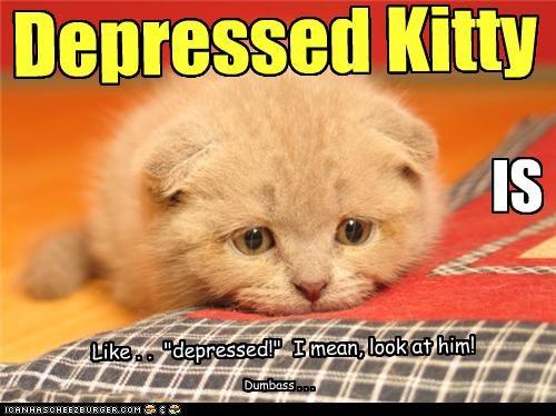 Depressed Kitty