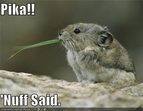 Pika!!  'Nuff Said.