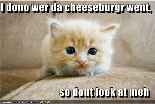 I dono wer da cheeseburgr went,  so dont look at meh