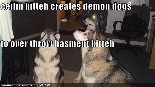ceilin kitteh creates demon dogs  to over throw basment kitteh