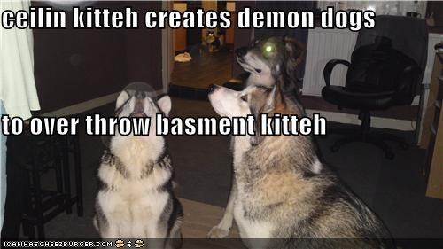 army,basement cat,ceiling cat,creation,demons,huskies,minions