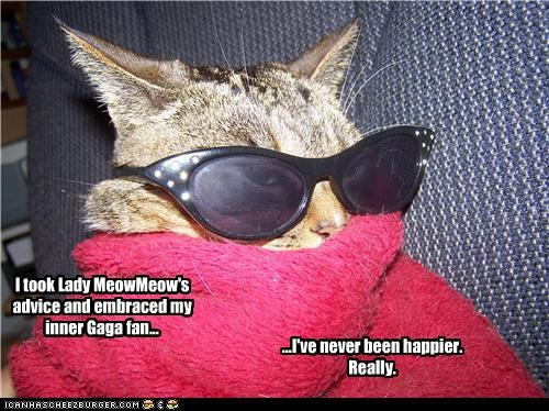 Lady MeowMeow was right!