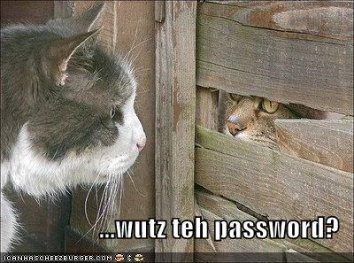 ...wutz teh password?