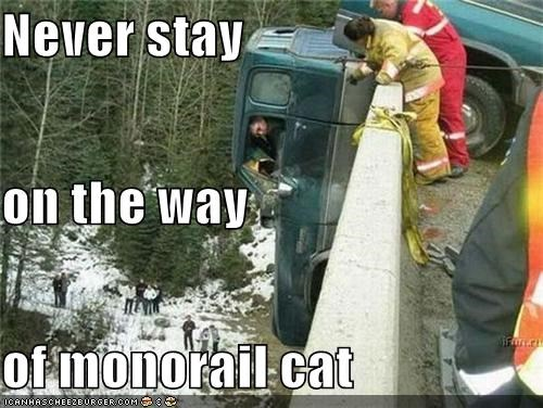 Never stay on the way of monorail cat
