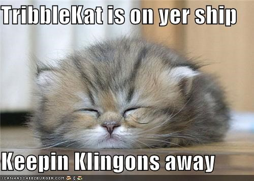TribbleKat is on yer ship  Keepin Klingons away