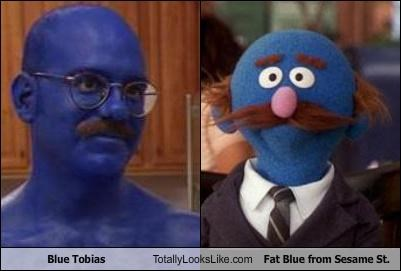 Blue Tobias Totally Looks Like Fat Blue from Sesame St.