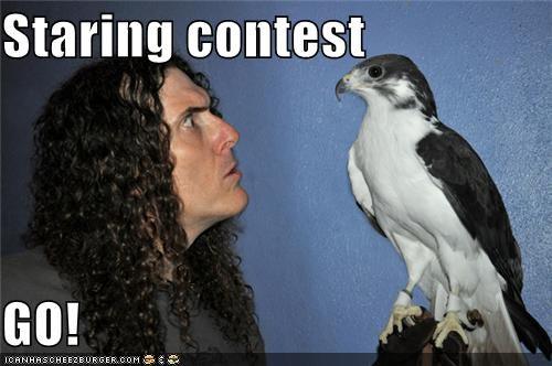 Staring contest  GO!
