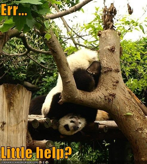 Err...  Little help?