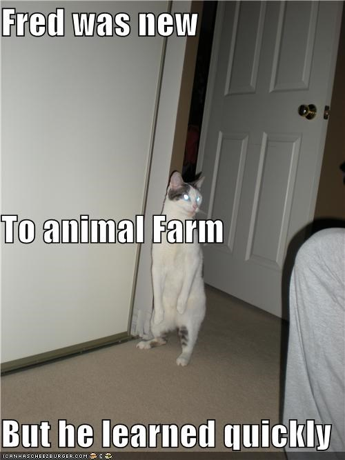 Fred was new To animal Farm But he learned quickly