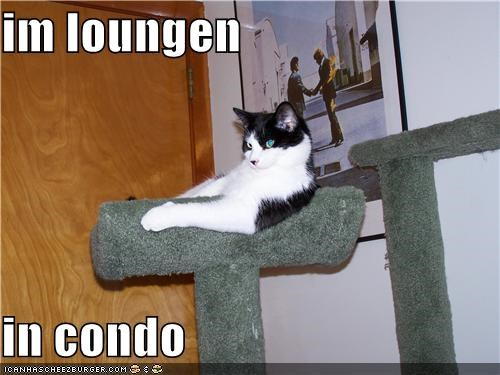im loungen   in condo