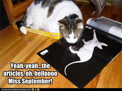 Yeah, yeah...the articles, oh, helloooo Miss September!