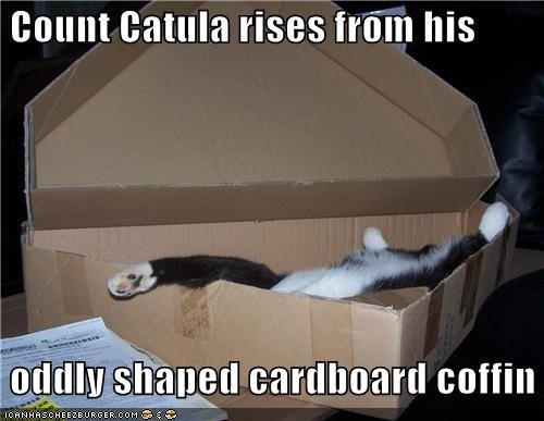 Count Catula rises from his   oddly shaped cardboard coffin