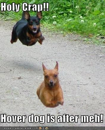 Holy Crap!!  Hover dog is after meh!