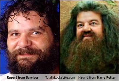 Hagrid,Harry Potter,rupert,survivor
