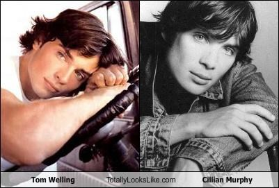 Tom Welling Totally Looks Like Cillian Murphy